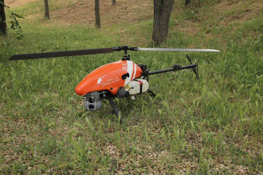 Alpha with DST sensor landing on grass